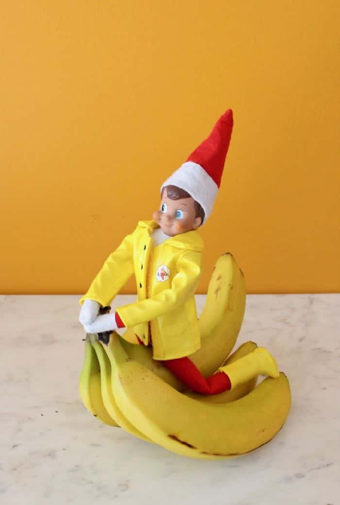 Elf on the Shelf Goes Vegan - Elf and His Bananas