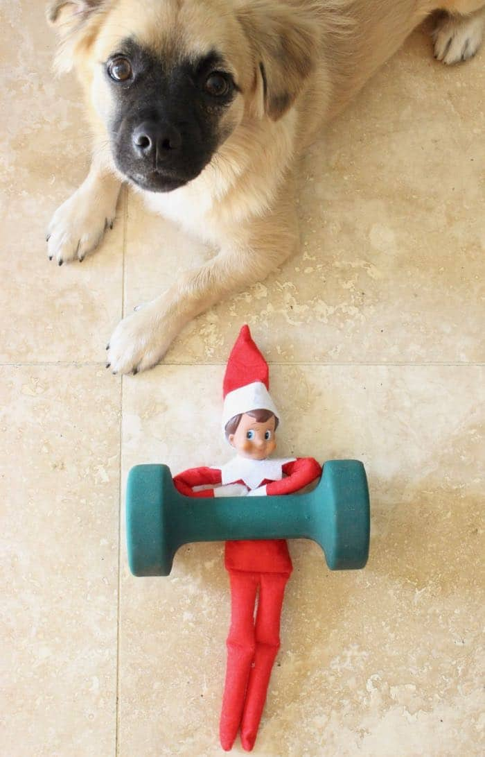 Easy & Funny Elf on the Shelf Ideas 2018 - Elf Working Out
