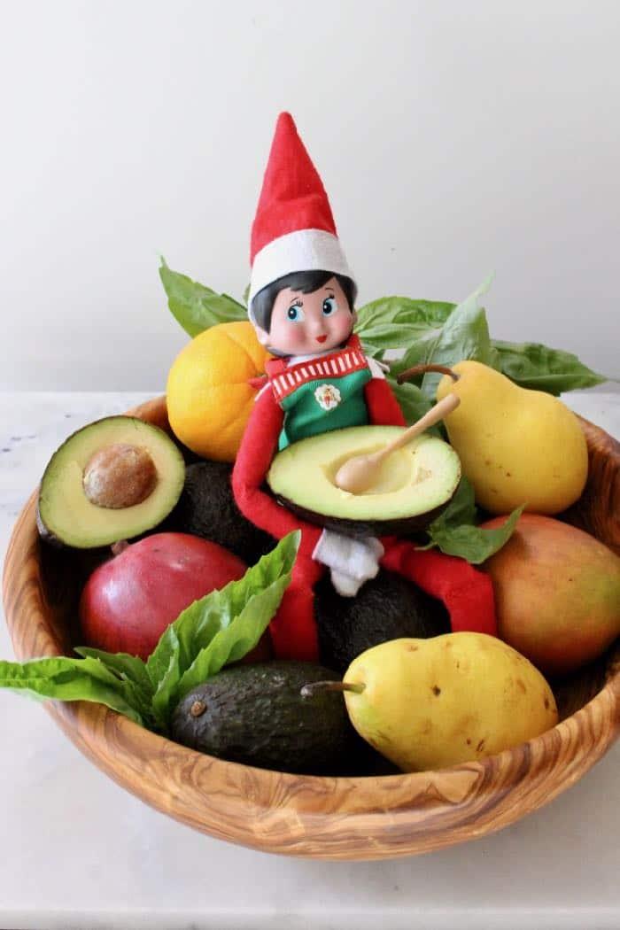Funny Elf on the Shelf Goes Vegan 2018