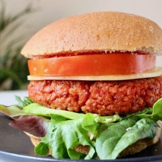 Vegan Veggie Burger Patties (5)