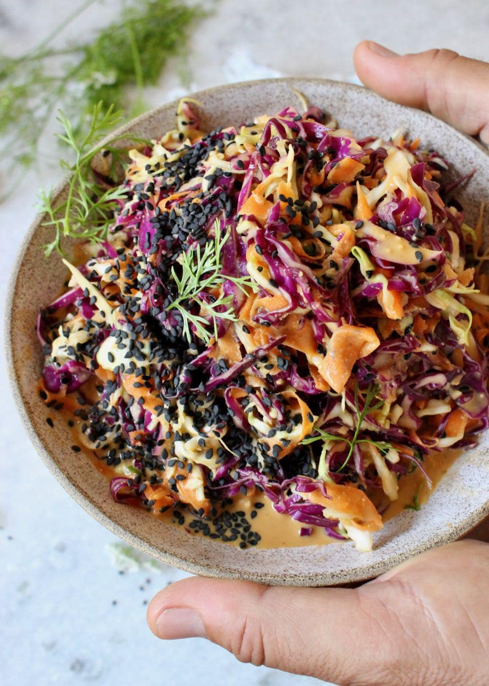 Asian Peanut Slaw Recipe
