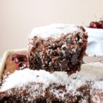 slice of chocolate sheet cake with coconut