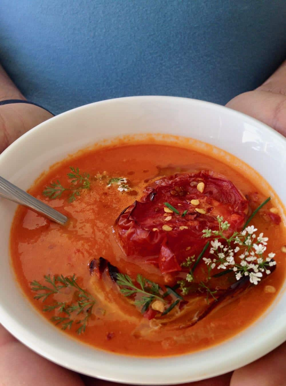 Best Heirloom Tomato Soup from Scratch
